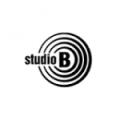 TV STUDIO B – Deca iz Studija kulture govora i glume snimila seriju za RTS