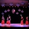 Успешно одржани шести Плесни сусрети