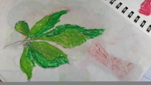 Искра Петровић, 8 година, Лист, Београд