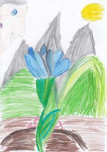 Мина Станојевић, 9 година, Плави цвет, Београд